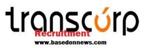 transcorp recruitment